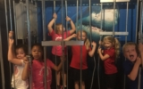 Kindergarten and 1st Grade Head to the Chattanooga Aquarium